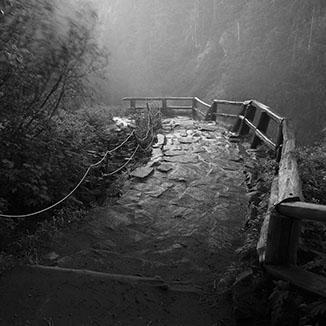 A Beaten Path (Photography, 2010)